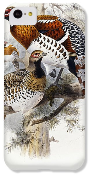 Elliot's Pheasant IPhone 5c Case by Joseph Wolf
