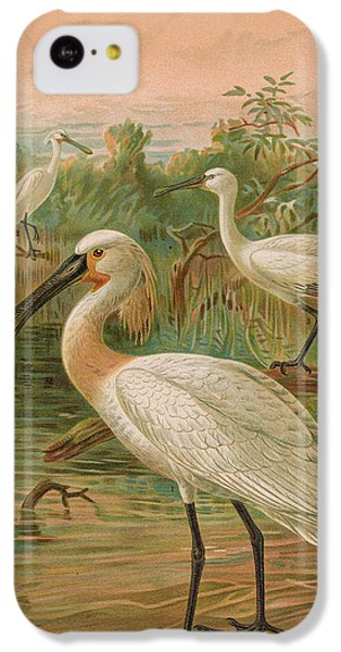 Eurasian Spoonbill IPhone 5c Case by J G Keulemans