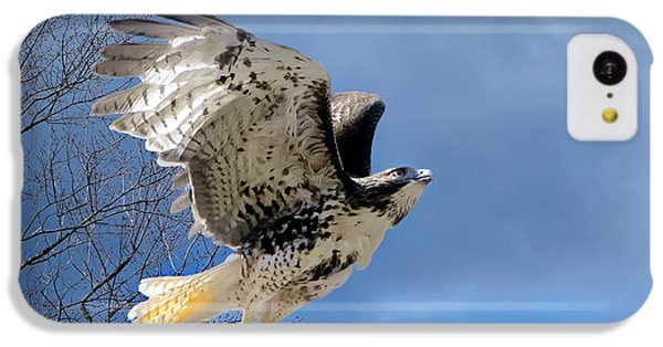 Flight Of The Red Tail IPhone 5c Case by Bill Wakeley