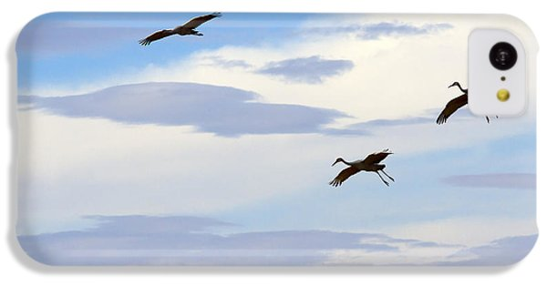 Flight Of The Sandhill Cranes IPhone 5c Case by Mike  Dawson