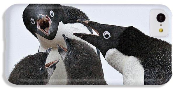 Four Penguins IPhone 5c Case by Carol Walker