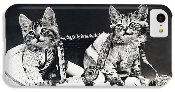 Frees Kittens, C1915 IPhone 5c Case by Granger