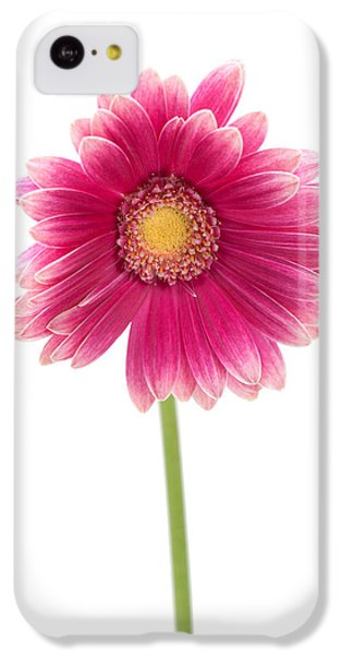 Gerbera IPhone 5c Case by Sebastian Musial