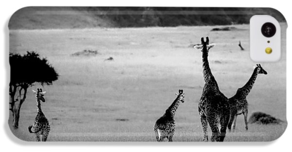 Giraffe In Black And White IPhone 5c Case by Sebastian Musial