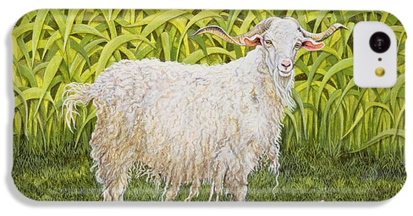 Goat IPhone 5c Case by Ditz