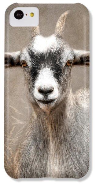 Goat Portrait IPhone 5c Case by Lori Deiter