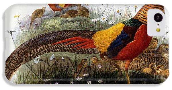 Golden Pheasants IPhone 5c Case by Joseph Wolf