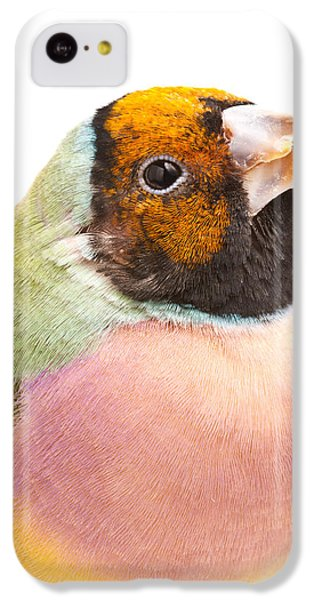 Gouldian Finch Erythrura Gouldiae IPhone 5c Case by David Kenny