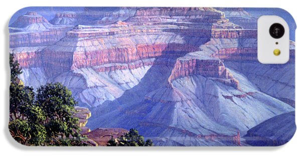 Grand Canyon IPhone 5c Case by Randy Follis