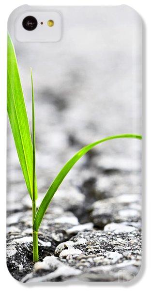Grass In Asphalt IPhone 5c Case by Elena Elisseeva