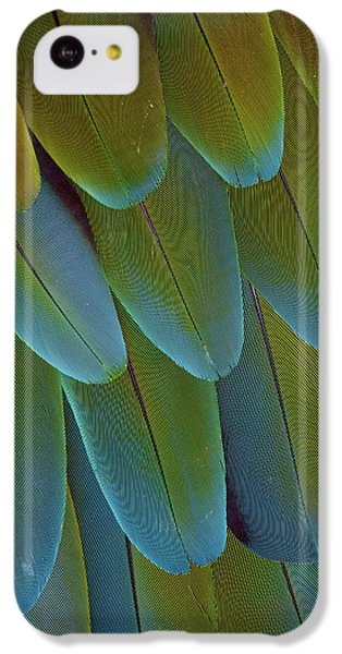 Green-winged Macaw Wing Feathers IPhone 5c Case by Darrell Gulin