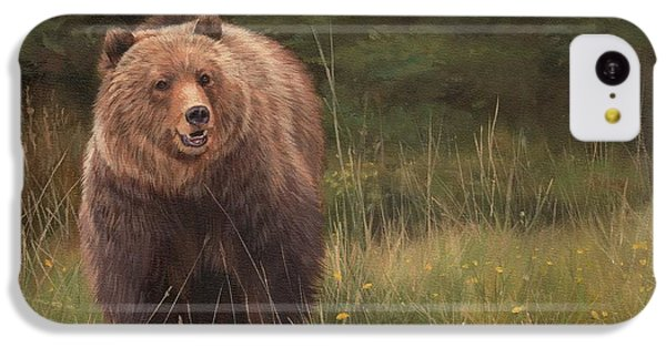 Grizzly IPhone 5c Case by David Stribbling