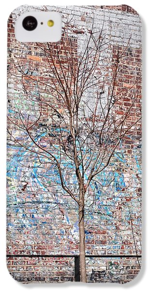 High Line Palimpsest IPhone 5c Case by Rona Black