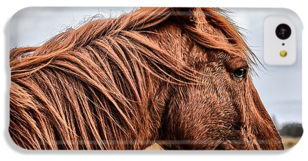 Horsey Horsey IPhone 5c Case by John Farnan
