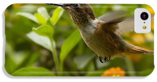Hummingbird Looking For Food IPhone 5c Case by Heiko Koehrer-Wagner
