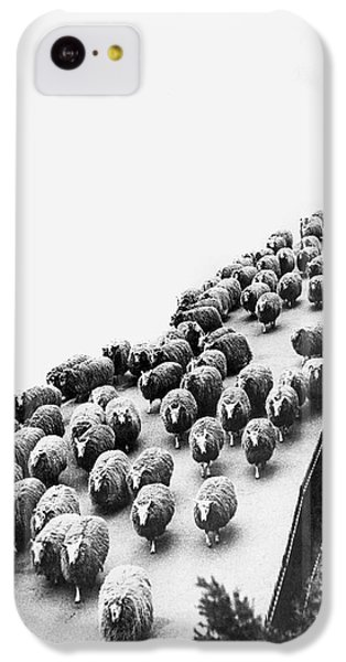 Hyde Park Sheep Flock IPhone 5c Case by Underwood Archives