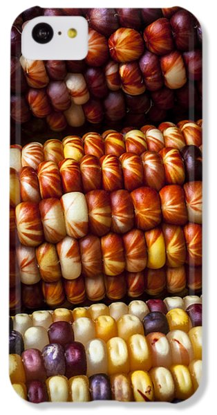 Indian Corn Harvest Time IPhone 5c Case by Garry Gay