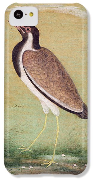 Indian Lapwing IPhone 5c Case by Mansur
