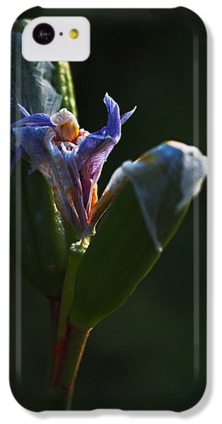 Iris Emerging  IPhone 5c Case by Rona Black