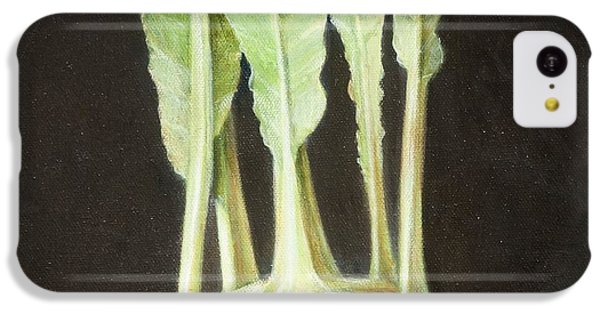 Kohl Rabi, 2012 Acrylic On Canvas IPhone 5c Case by Lincoln Seligman