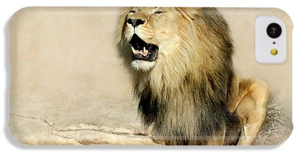 Lion IPhone 5c Case by Heike Hultsch