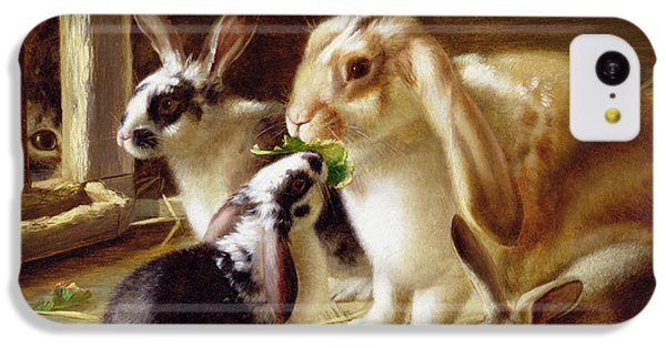 Long-eared Rabbits In A Cage Watched By A Cat IPhone 5c Case by Horatio Henry Couldery