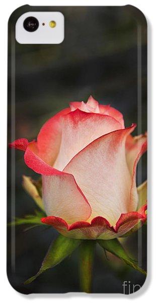 Love Is A Rose II IPhone 5c Case by Al Bourassa