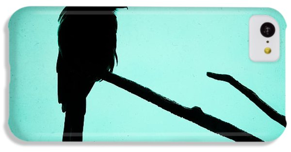 Magpie Shrike Silhouette IPhone 5c Case by Gary Heller