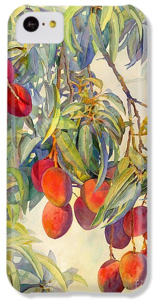 Mangoes In The Evening Light IPhone 5c Case by Dorothy Boyer