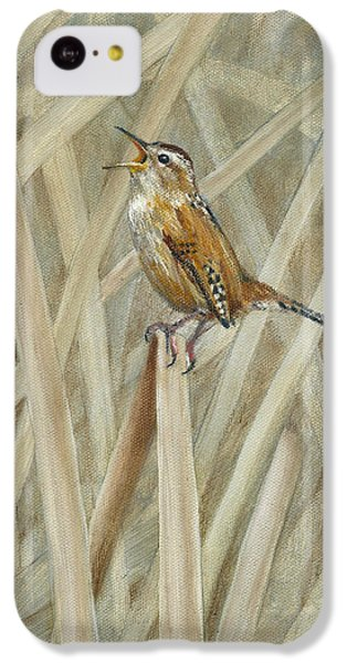 Marsh Melody IPhone 5c Case by Rob Dreyer AFC