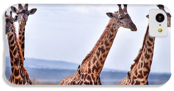 Masai Giraffe IPhone 5c Case by Adam Romanowicz