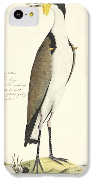 Masked Lapwing, 18th Century IPhone 5c Case by Natural History Museum, London