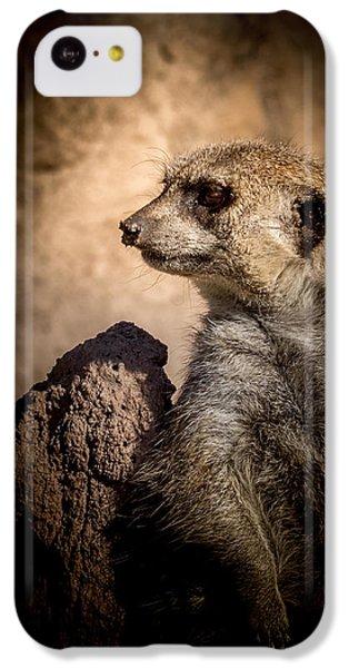 Meerkat 12 IPhone 5c Case by Ernie Echols