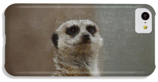 Meerkat 5 IPhone 5c Case by Ernie Echols