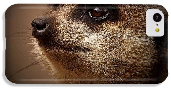 Meerkat 6 IPhone 5c Case by Ernie Echols
