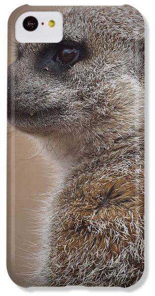 Meerkat 9 IPhone 5c Case by Ernie Echols