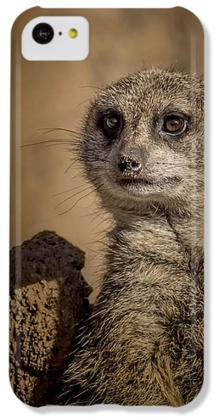 Meerkat IPhone 5c Case by Ernie Echols