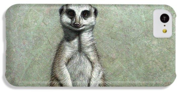 Meerkat IPhone 5c Case by James W Johnson