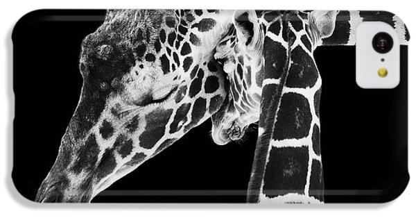 Mother And Baby Giraffe IPhone 5c Case by Adam Romanowicz