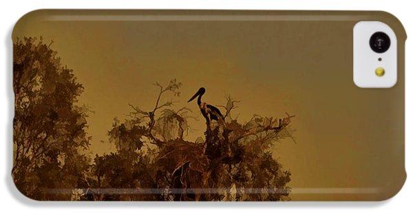 Nesting Jabiru  IPhone 5c Case by Douglas Barnard
