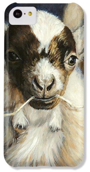 Nigerian Dwarf Goat With Straw IPhone 5c Case by Dottie Dracos