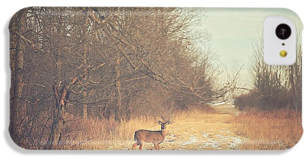 November Deer IPhone 5c Case by Carrie Ann Grippo-Pike