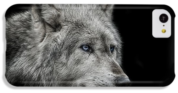 Old Blue Eyes IPhone 5c Case by Paul Neville