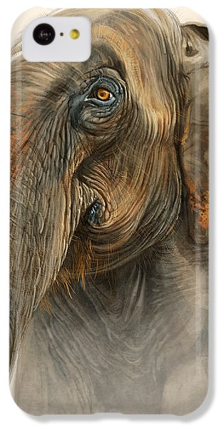 Old Lady Of Nepal 2 IPhone 5c Case by Aaron Blaise