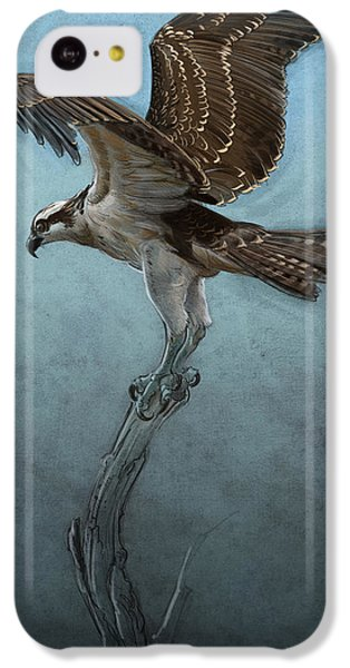 Osprey IPhone 5c Case by Aaron Blaise