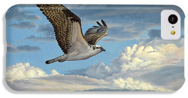 Osprey In The Clouds IPhone 5c Case by Paul Krapf