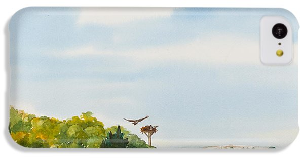 Ospreys On The Vineyard Watercolor Painting IPhone 5c Case by Michelle Wiarda