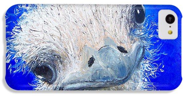 Ostrich Painting 'waldo' By Jan Matson IPhone 5c Case by Jan Matson