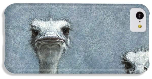 Ostriches IPhone 5c Case by James W Johnson