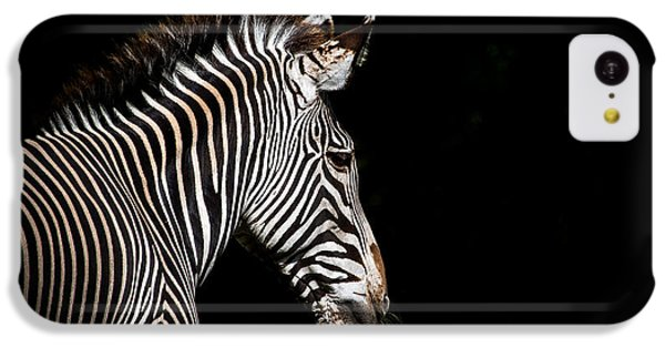 Out Of The Shadows IPhone 5c Case by Scott Mullin